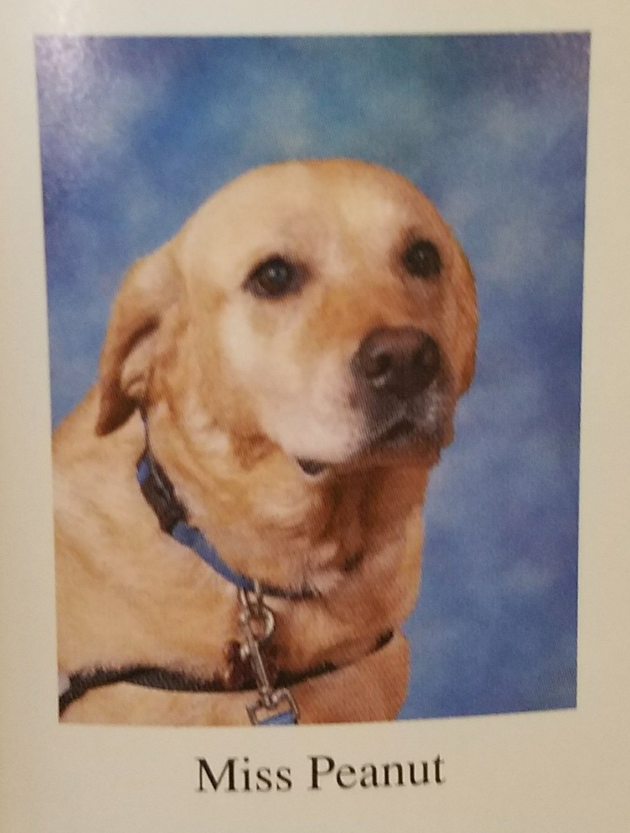 a-therapy-dog-made-it-into-a-school-yearbook
