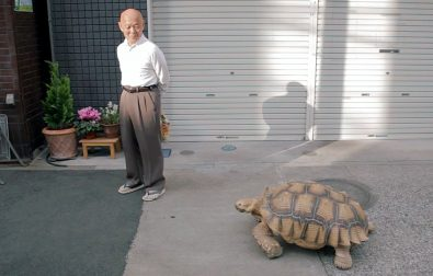 man-and-his-tortoise