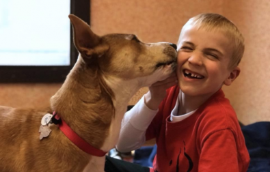 6-year-old-boy-saves-over-1000-dogs-from-kill-shelters