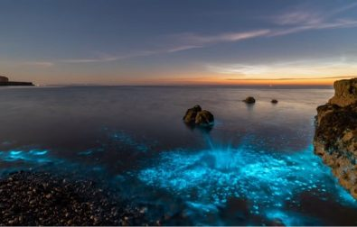 watch-the-sea-turn-bright-electric-blue