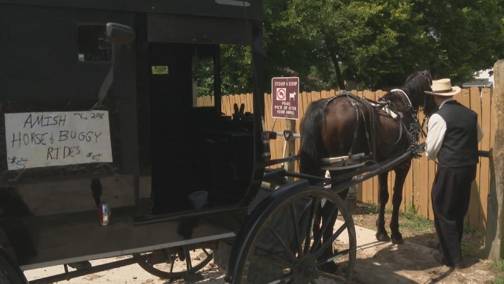 amish-man-launches-horse-and-buggy-ride-sharing-service