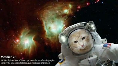 send-yourself-or-your-pet-to-space-with-nasas-selfies-app