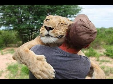 animals-hugging-humans