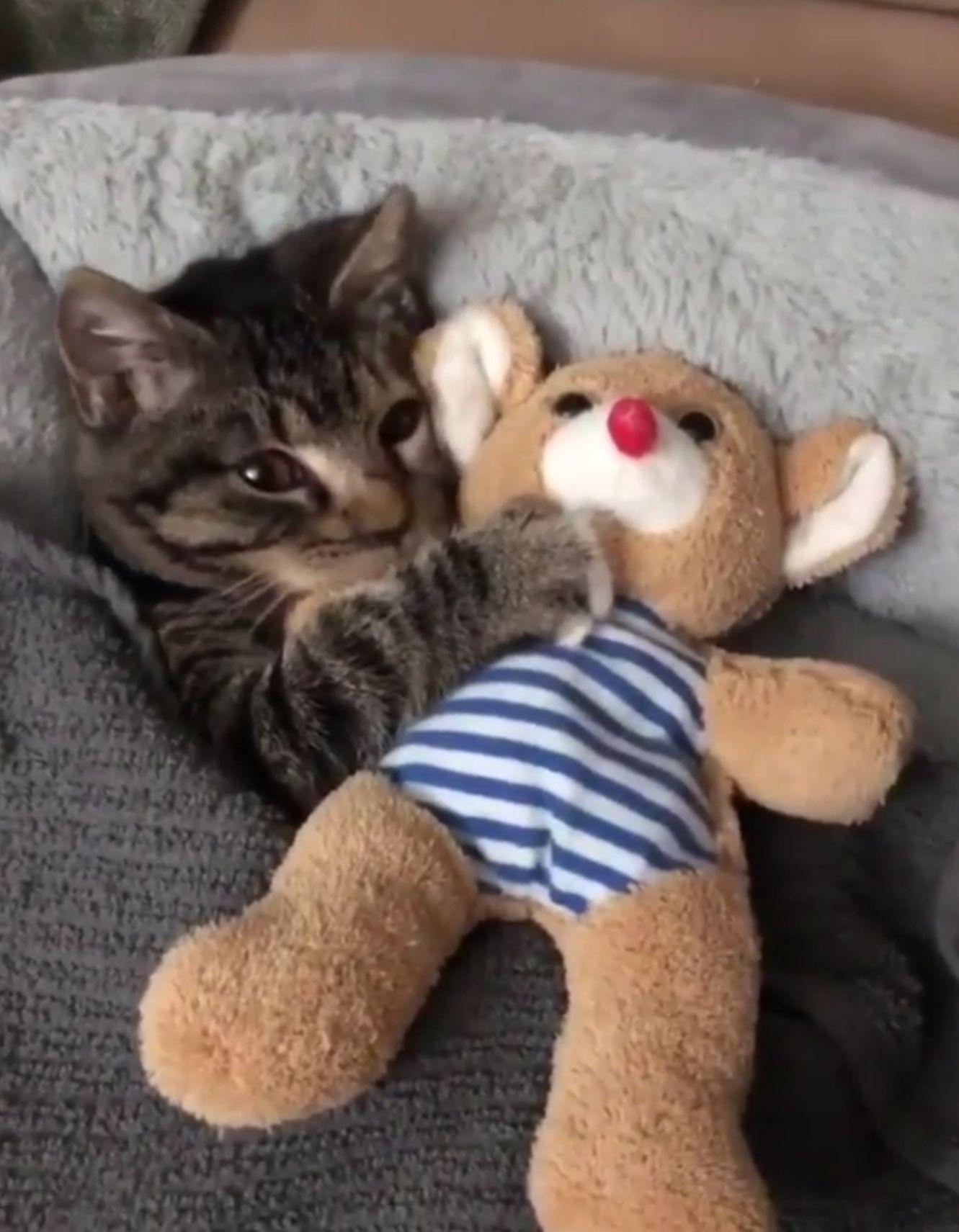 time-to-put-baby-to-sleep