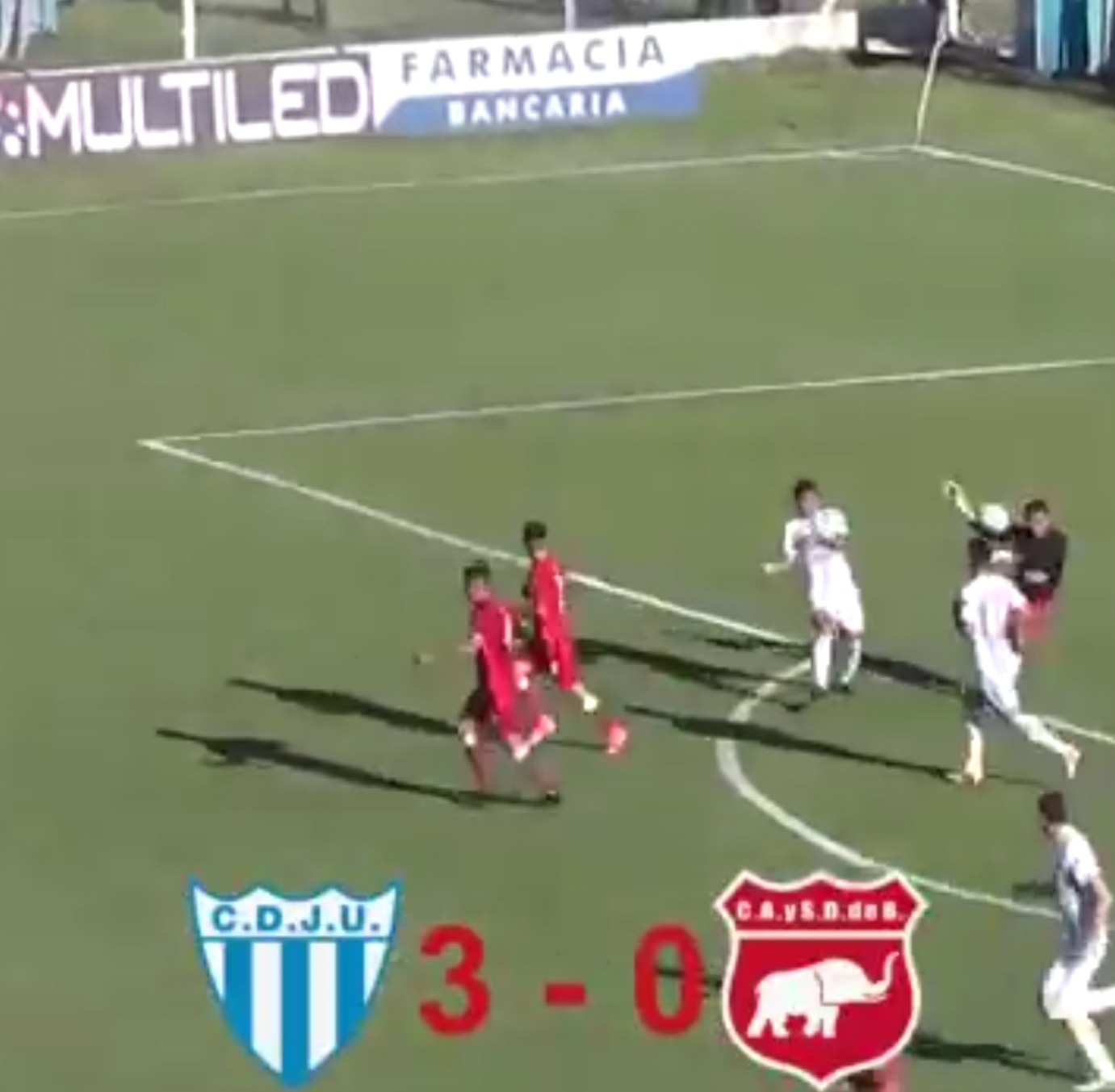 a-dog-made-a-remarkable-save-during-this-match-%f0%9f%98%82