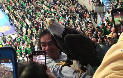 a-bald-eagle-went-wild-ahead-of-the-cotton-bowl-classic-%f0%9f%a6%85