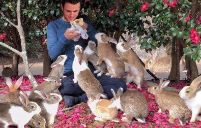 tour-of-rabbit-island-by-rabbit-expert