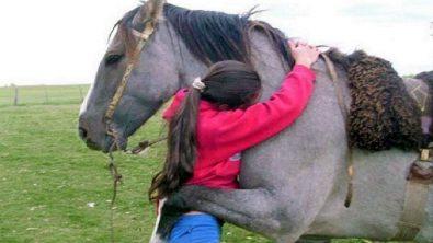animals-hugging-humams