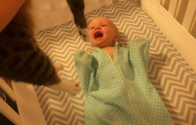 baby-loves-cat