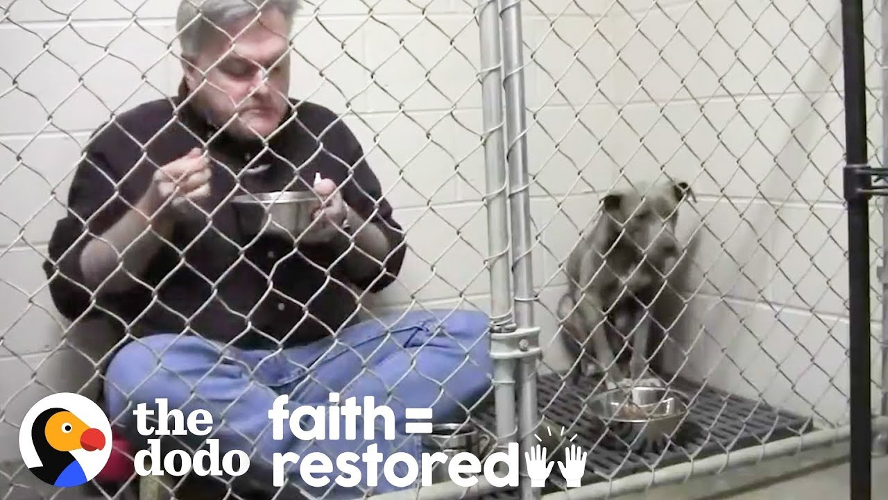 Vet Eats In Cage With Rescued Dog To Make Her Comfortable