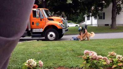 dog-loves-garbage-man