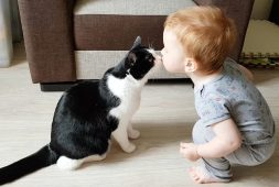 gentle-baby-and-cat-are-best-friends