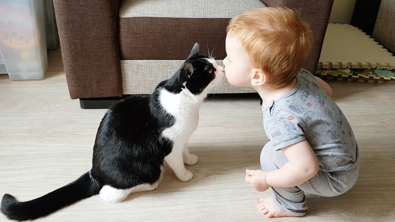 Gentle Baby And Cat Are Best Friends