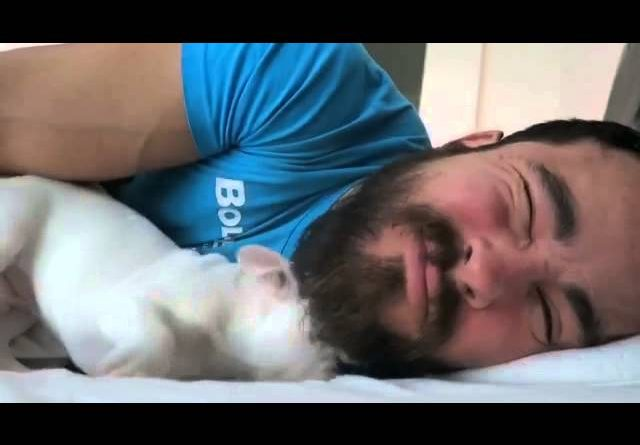 Man Gets An Adorable Alarm Clock