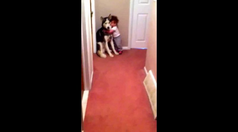 Baby Runs To Dog For Protection When Scared Of Vacuum 👶 🐕