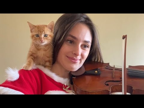 Kitten Assists Violin Player 😸 🎻 🎶