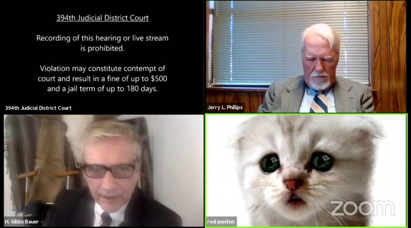 Lawyer Accidentally Choose Kitten Filter During Court Zoom Call