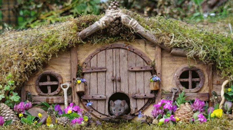 Man Builds A Miniature Village For Mice In His Garden